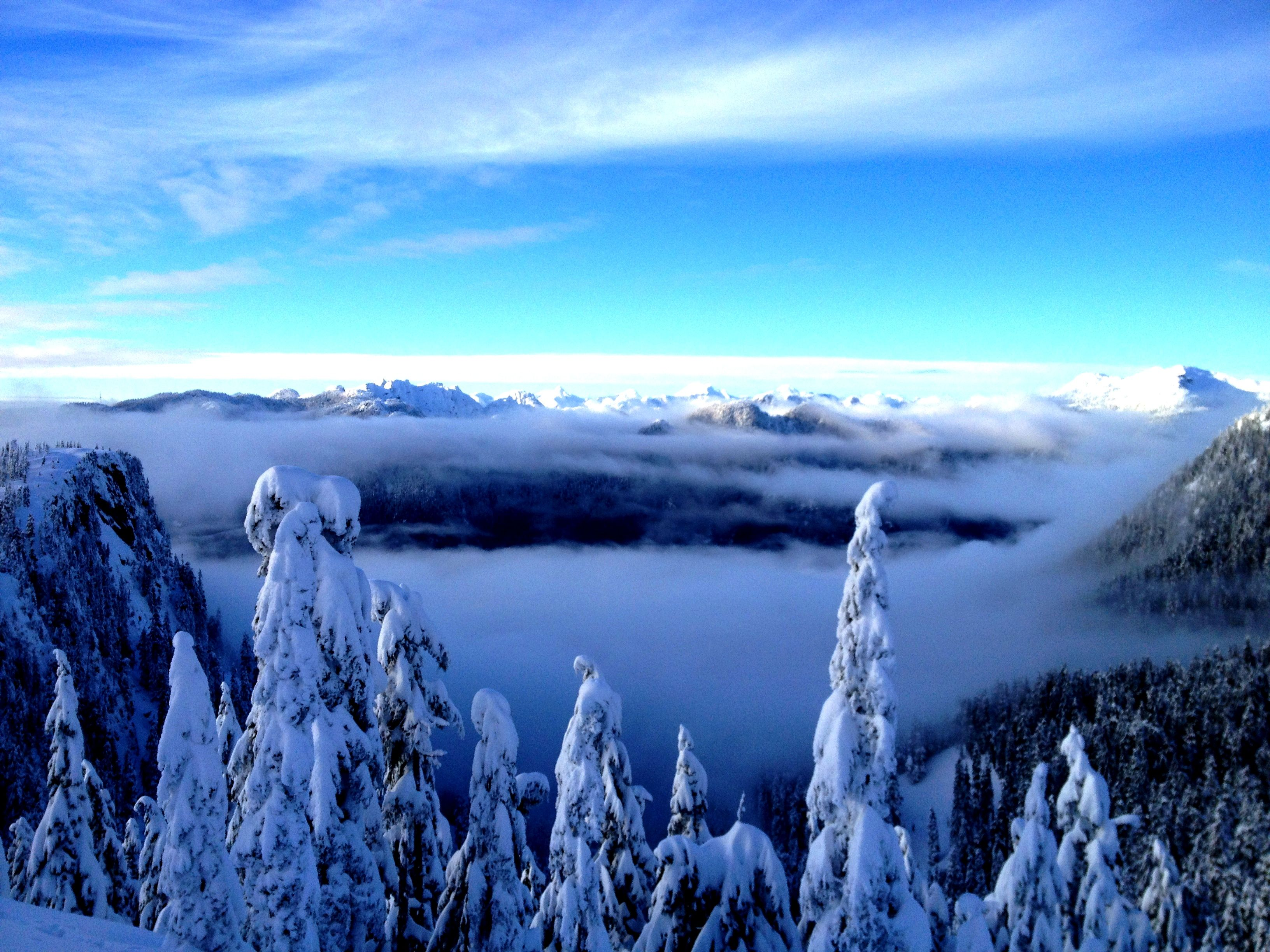 Baden powell trail on mt. Mt Seymour North Vancouver Vancouver Hotels North Vancouver Best Places To Live