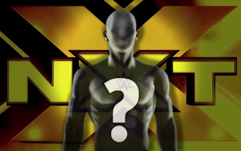 Exclusive Big Push In Store For Nxt Superstar Wwe Wrestling News Wwe Raw Videos