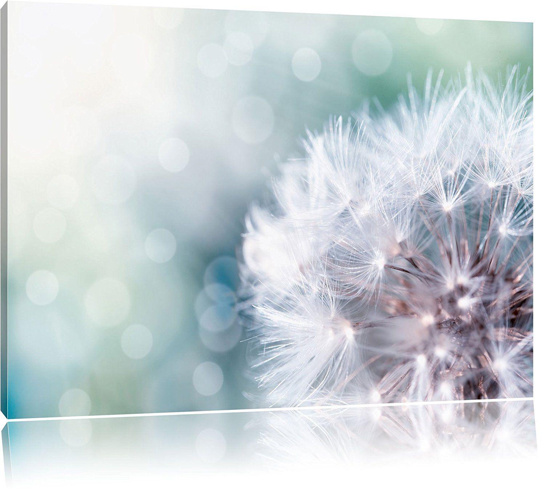 Zauberhafte Pusteblume, Format: 100x70 auf Leinwand, XXL riesige ...