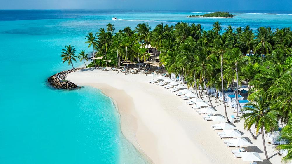 The 25 Best Island Beaches In The World 2020 Readers Choice Awards In 2021 Beaches In The World Turtle Bay Resort Island Beach
