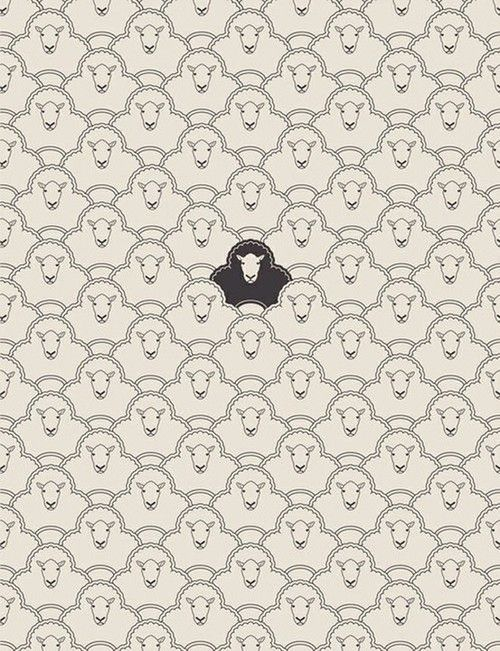 black sheep ♥ Loved by www.miekinvorm.nl    illustration + design
