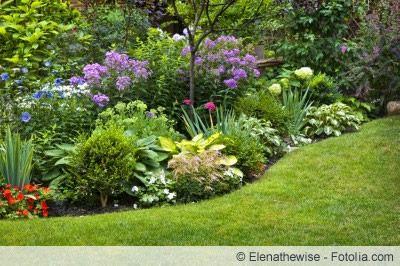 Immerblühendes Beet - Ganzjährig blühende Pflanzen #gartenlandschaftsbau