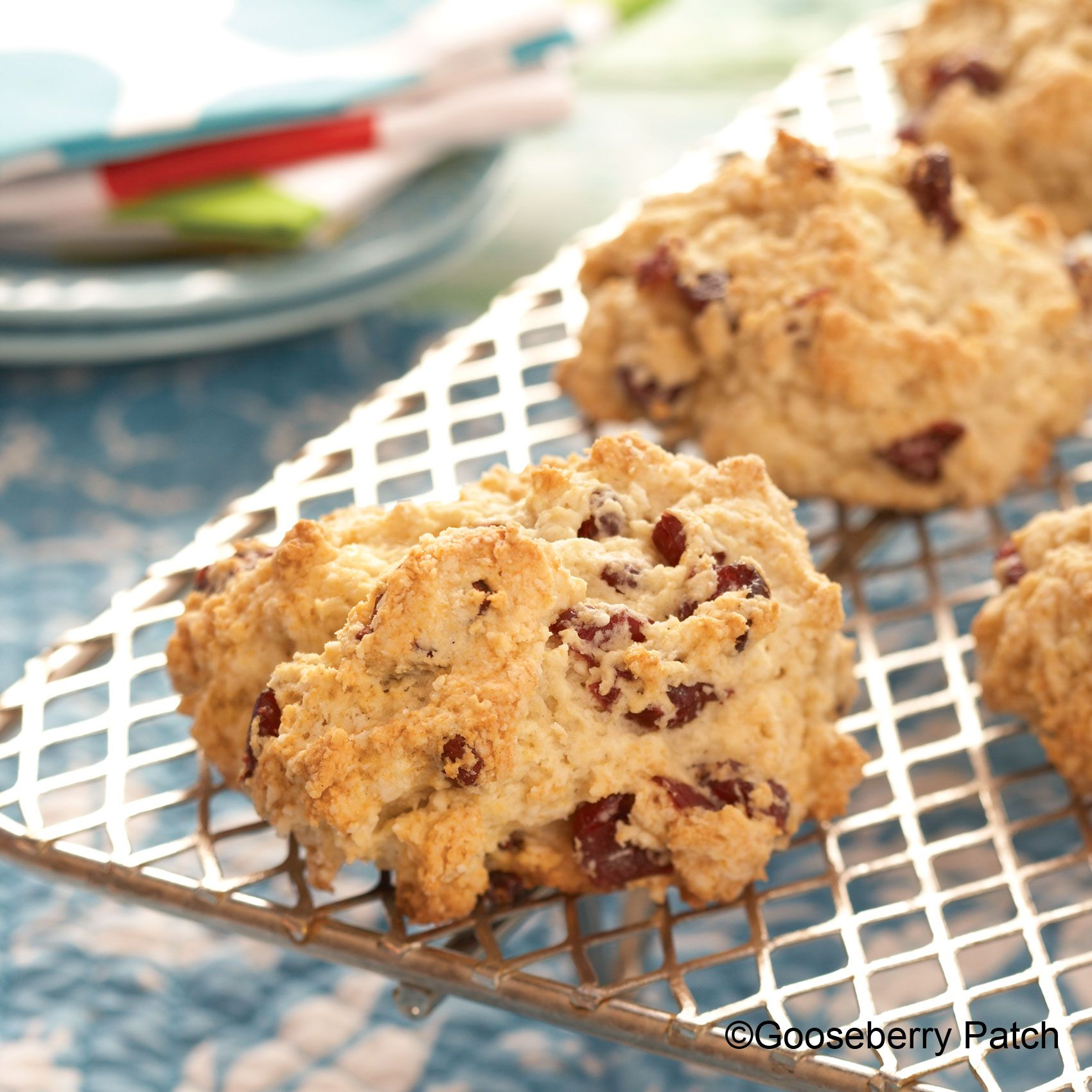 Gooseberry Patch Recipes Cranberry Buttermilk Scones From Suppers In A Snap Cookbook Buttermilk Scone Recipe Scone Recipe Cranberry Scones