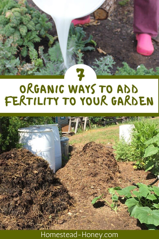 7 Organic Ways To Add Fertility To Your Garden In 2020 Sustainable Garden Benefits Of Gardening Little Gardens