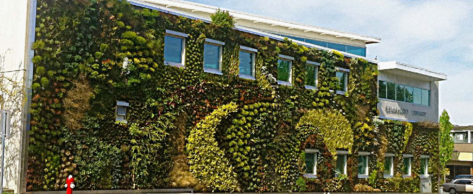 Wonderful Semiahmoo Libraryu0027s Green Wall Is The Largest Of Its Kind In North America! Nice Ideas