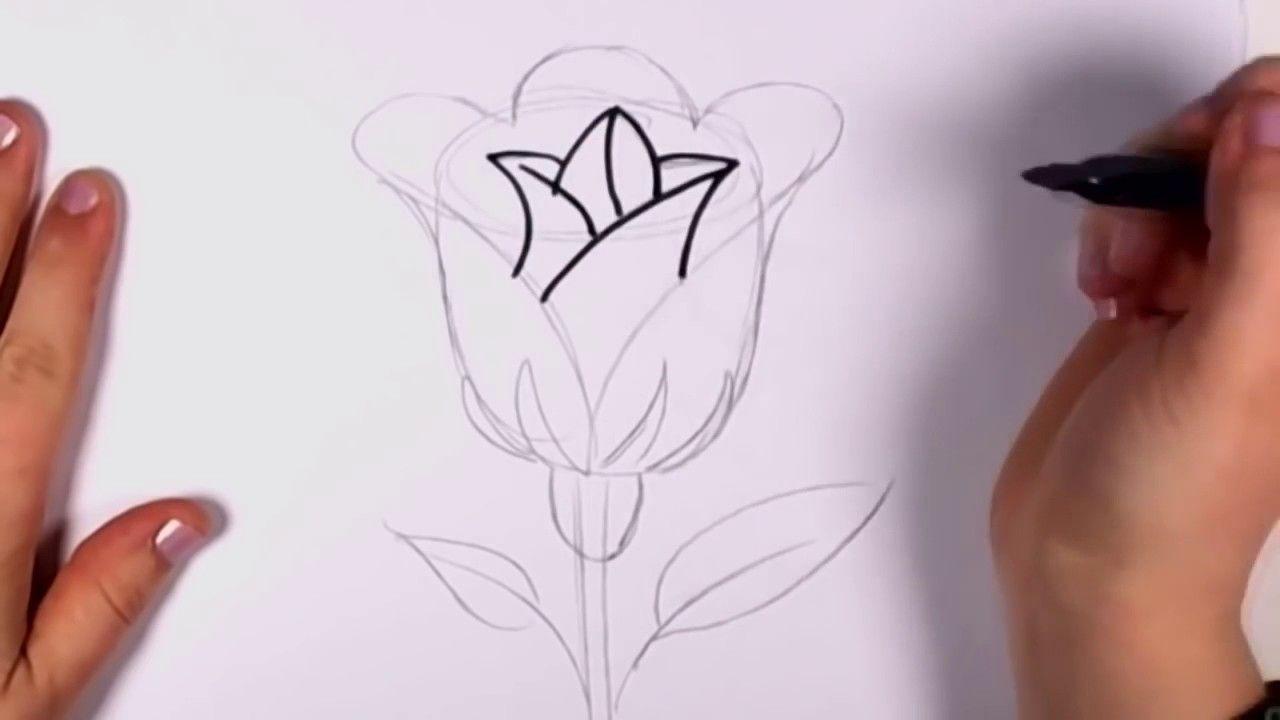 Gambar Bunga Yg Mudah Di Buat Dengan Gambar