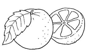 Risultati Immagini Per Arance Da Colorare Schede Symbols