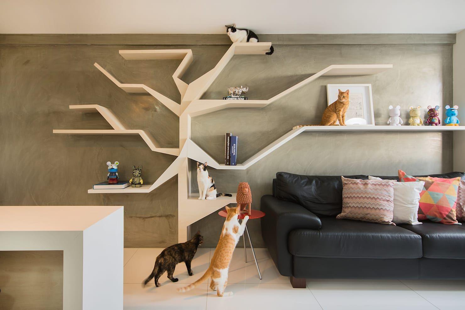 Especial muebles salón: 15 fabulosas ideas  Pared para gato