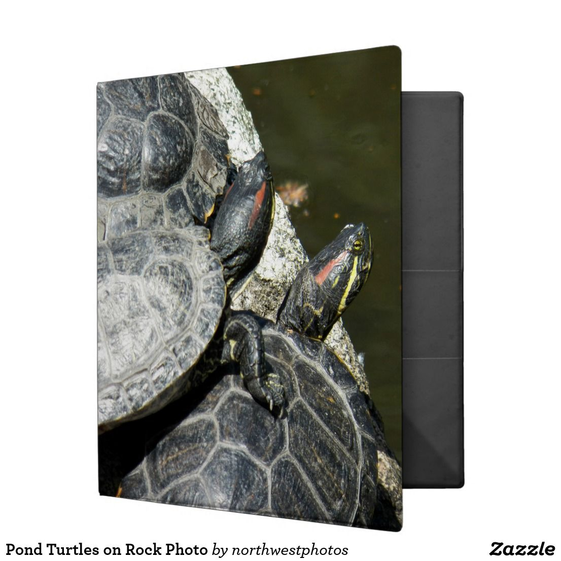 Pond Turtles On Rock Photo 3 Ring Binder