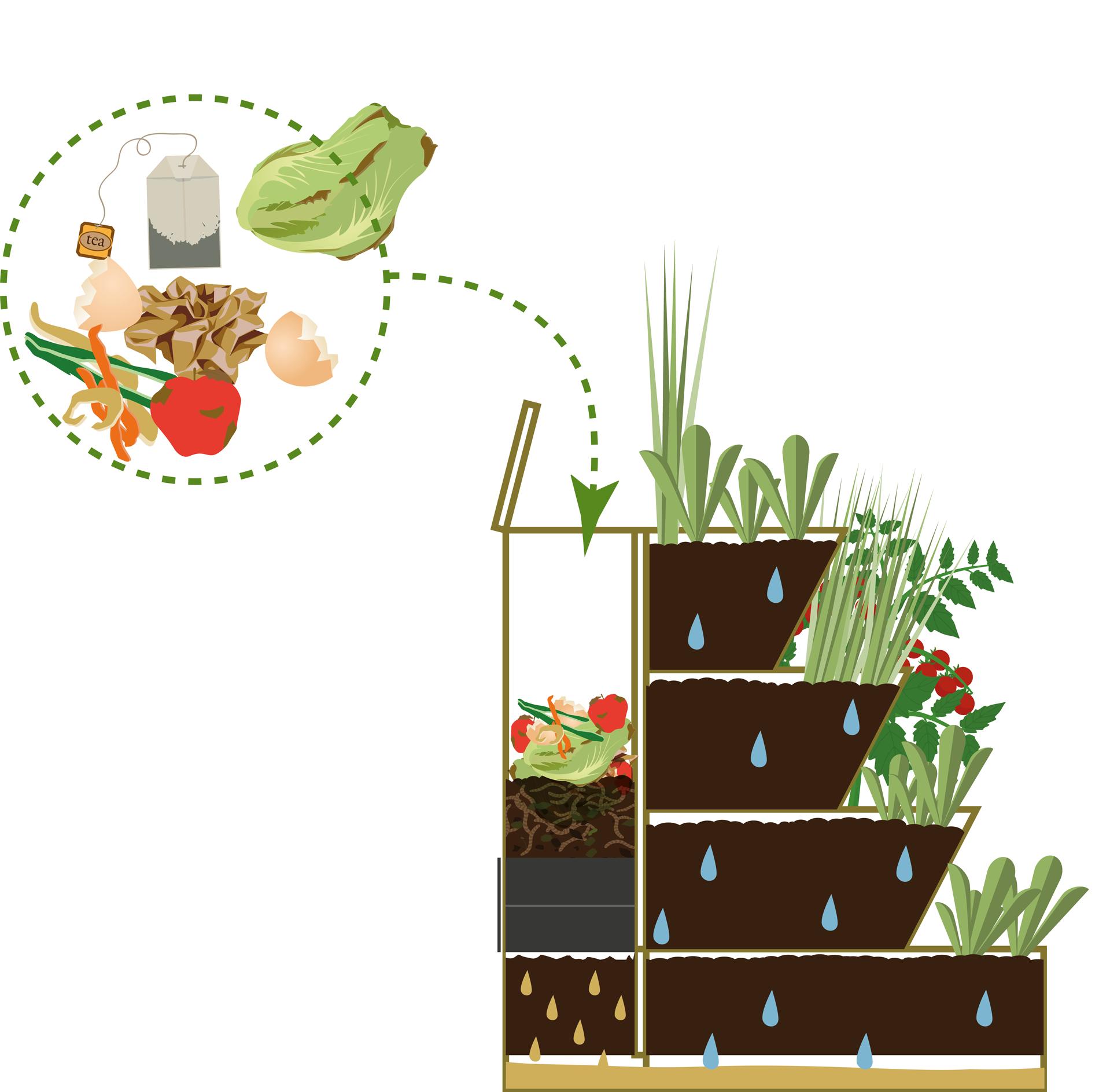 Lombricomposteur taille 80 cm jardinage et compostage - Comment faire un beau jardin potager ...