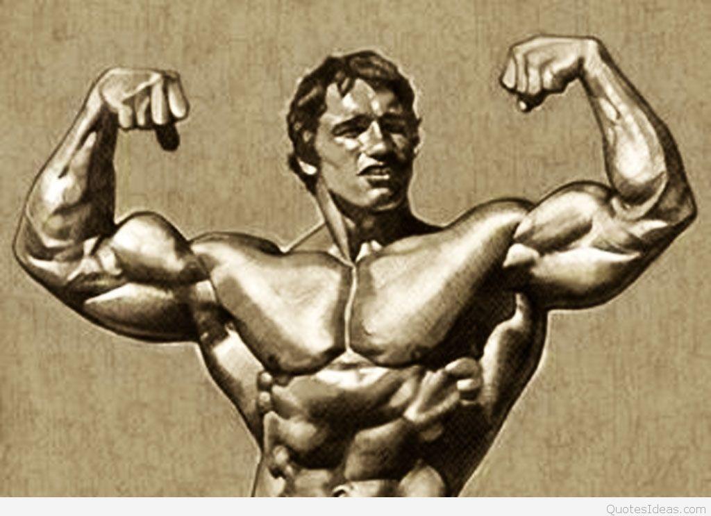 Bodybuilding Wallpapers Hd Wallpaper 1920 1200 Bodybuilding