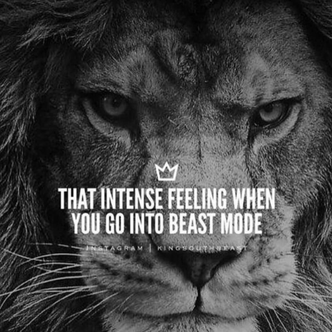 07:00am and out for morning exercise. It's feels different today. I have a lot more power. The lion...