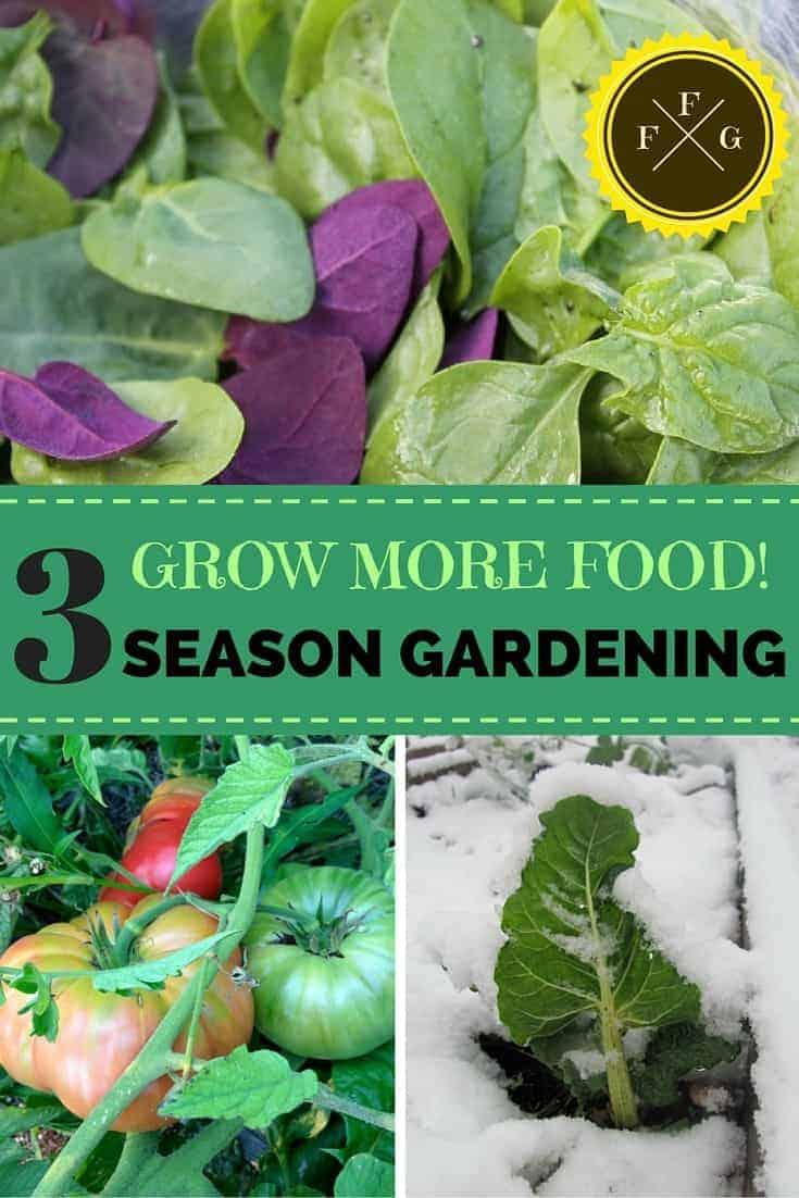Growing a 3 Season Garden in 2020 Food garden, Garden
