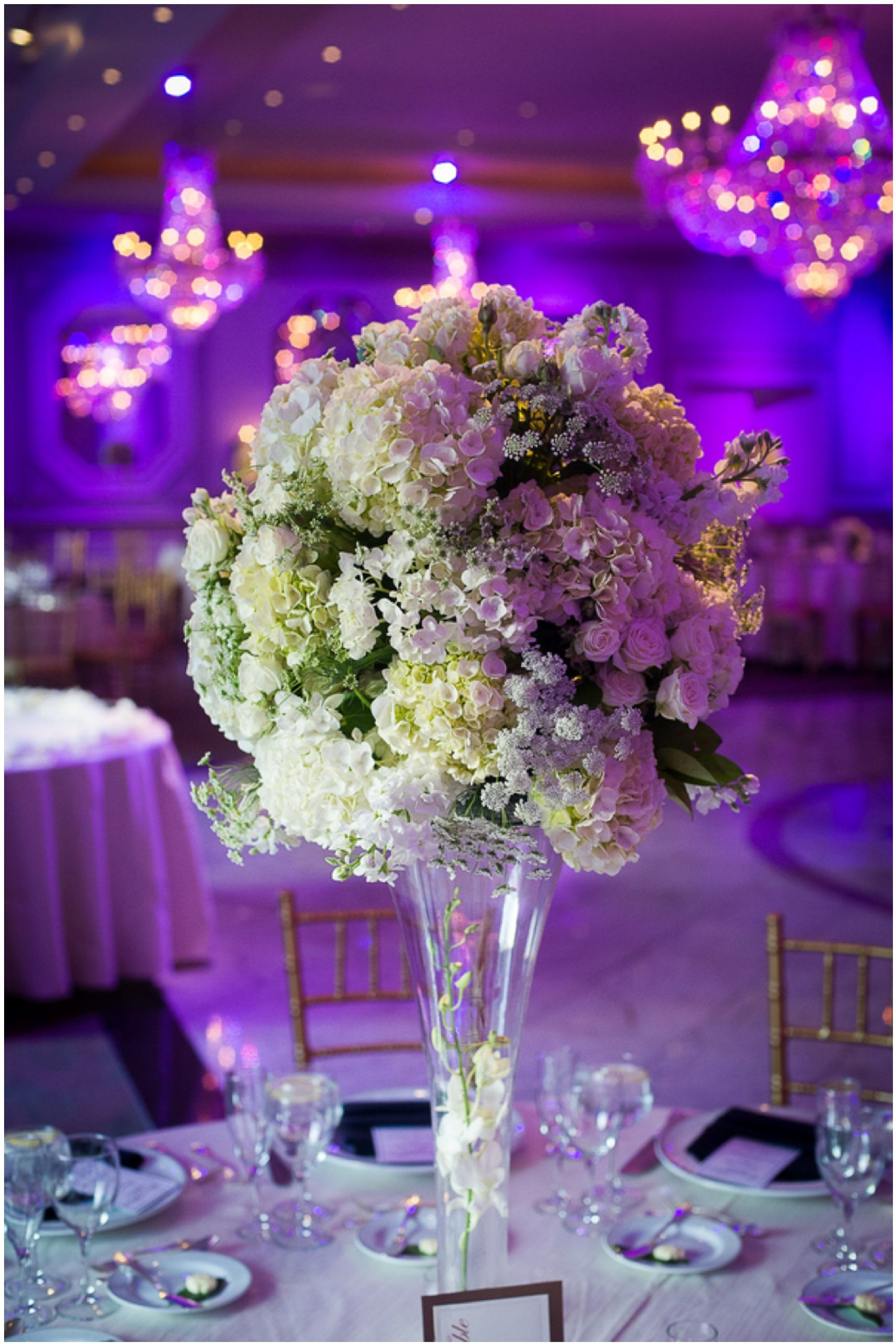 Diy decorations for wedding  Uplighting  The Ballroom  Pinterest  Diy centerpieces