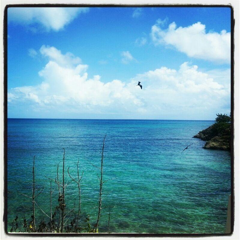 Guadeloupe Beach: Island Beach, Caribbean Islands