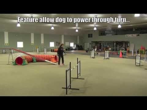 Tight Turns In Dog Agility Video One Agility Training For Dogs