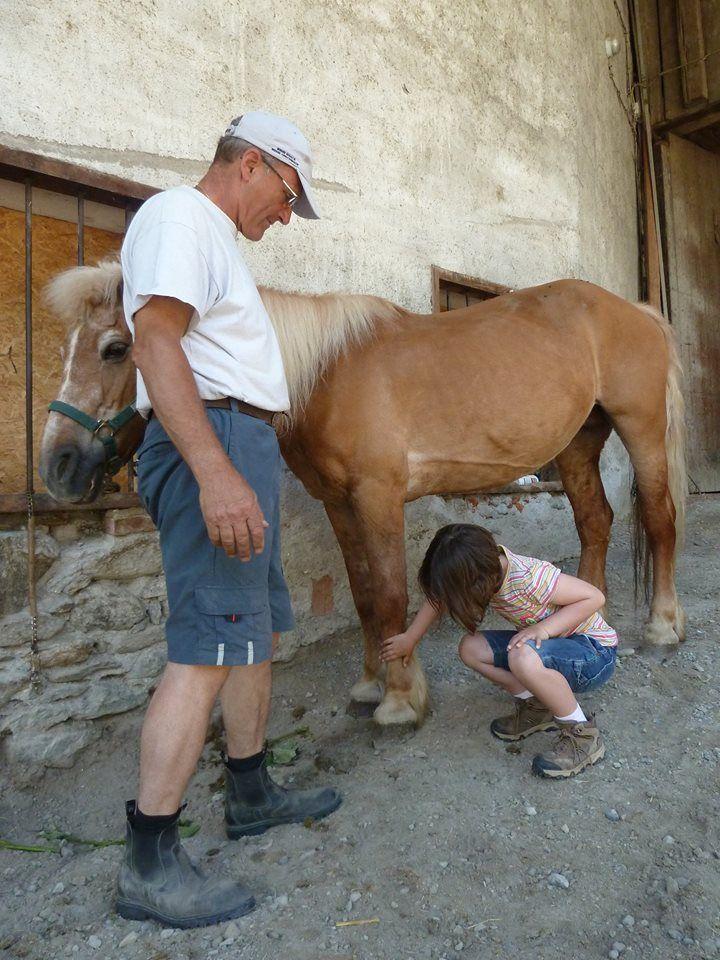 Spannend so ein Pferd