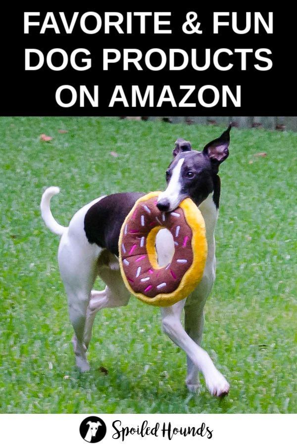 Favorite Dog Products On Amazon Cute Dog Toys Dogs Puppies