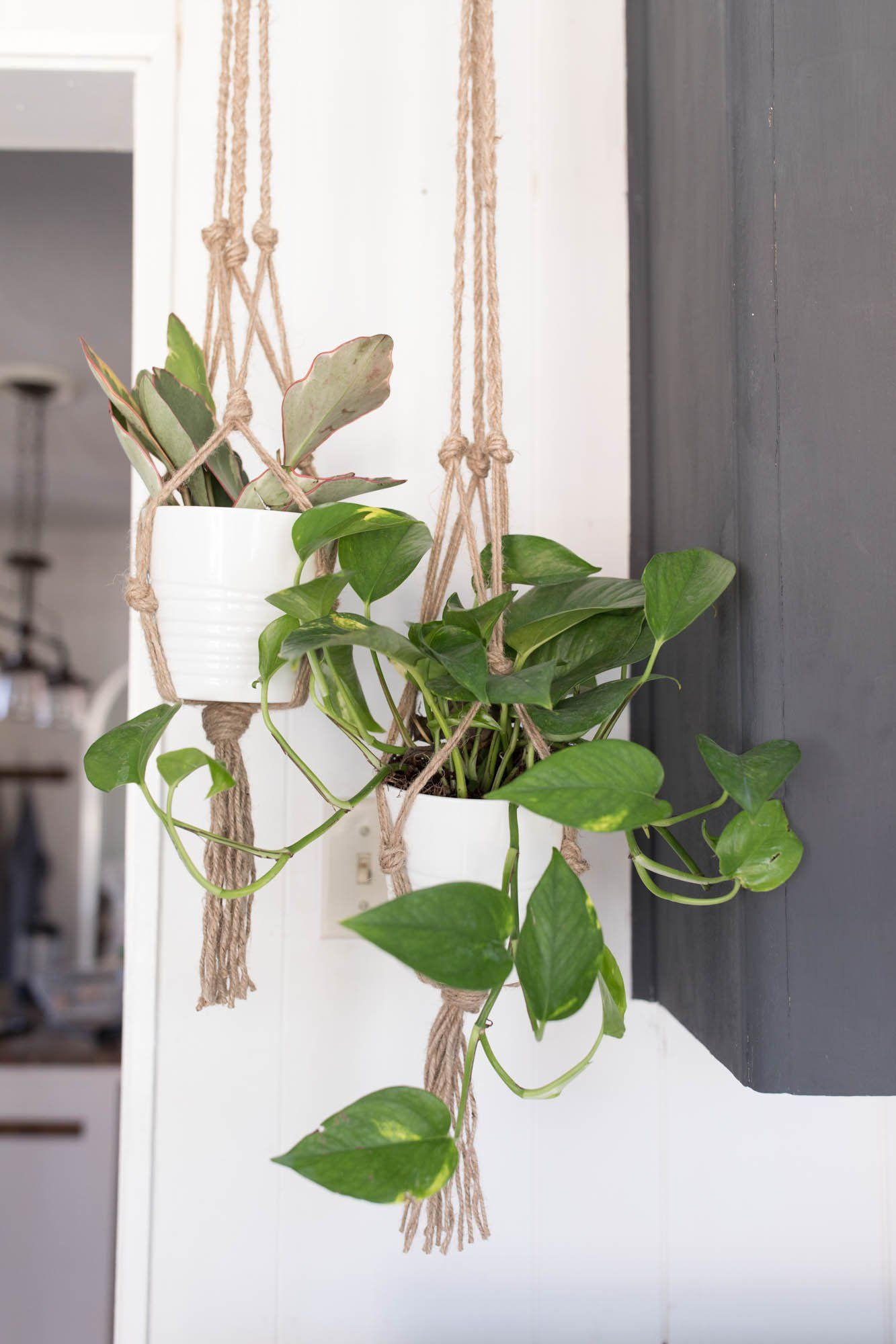 Macrame Plant Hanger DIY is part of Diy macrame plant hanger, Diy plant hanger, Plant hanger, Macrame plant hanger tutorial, Macrame plant hanger, Hanger diy - This simple DIY macrame plant hanger is perfect for spring  This simple macrame plant hanger tutorial costs less than $2 and takes 15 minutes to make