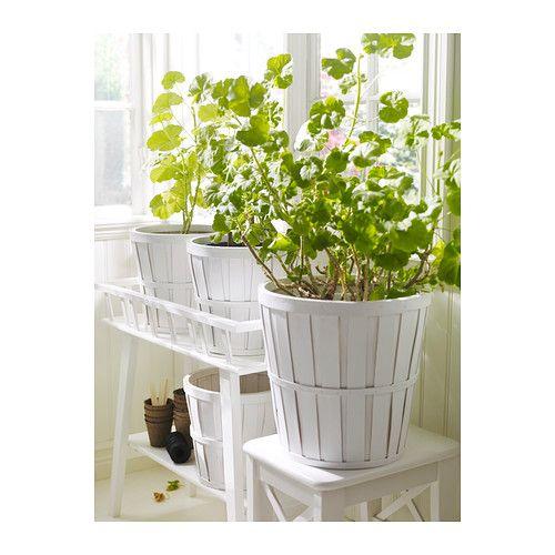 Ikea Indoor Plants Usa