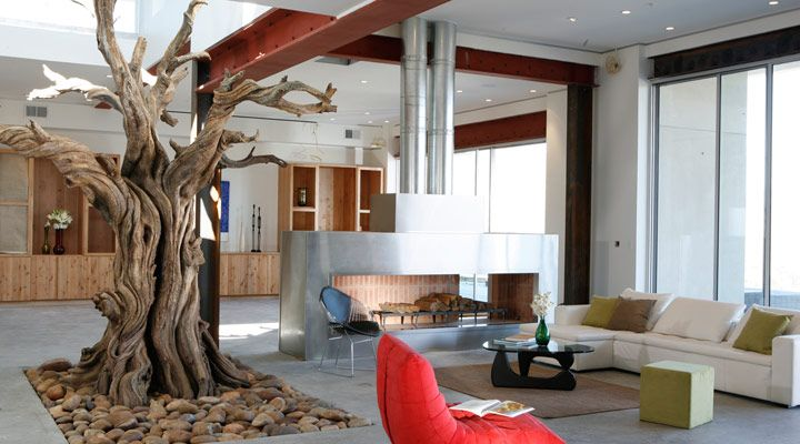 Inspiration for a tree house room. | For the Home | Pinterest ...
