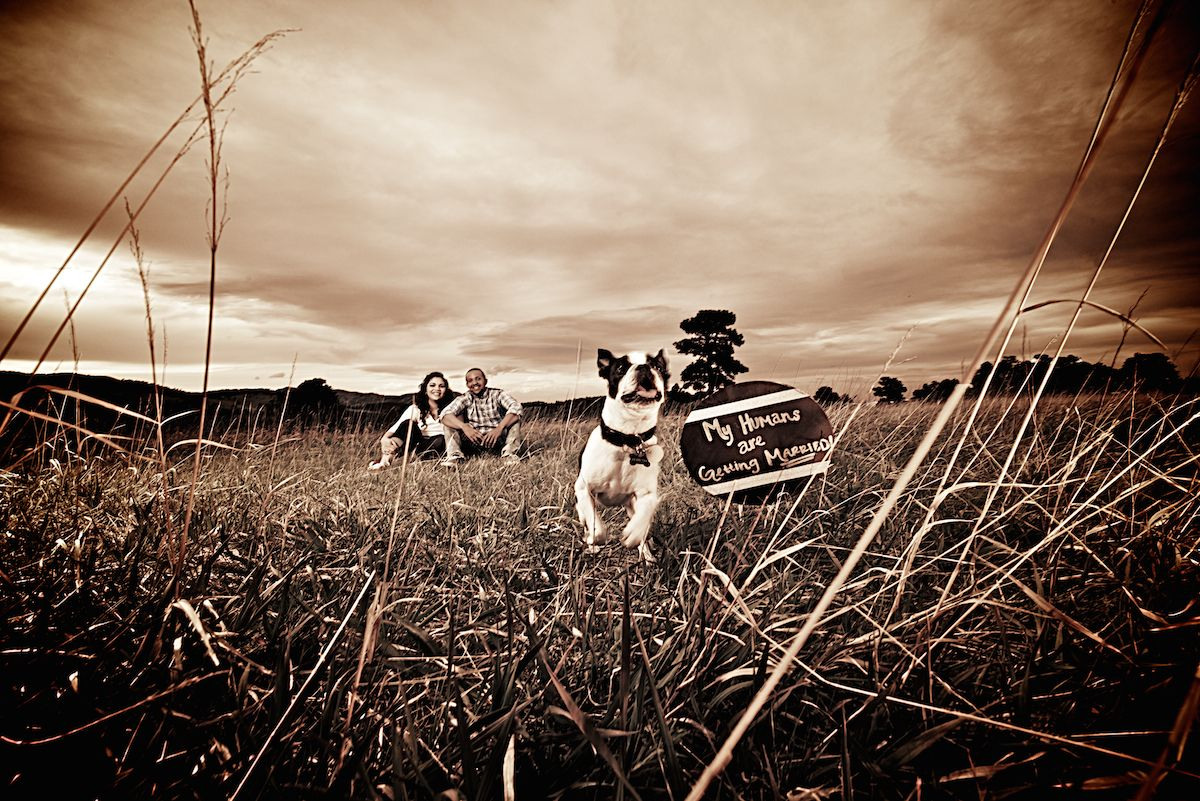 white-ranch-park-golden-colorado outdoor-mountain-engagement-session-with-dog-sepia