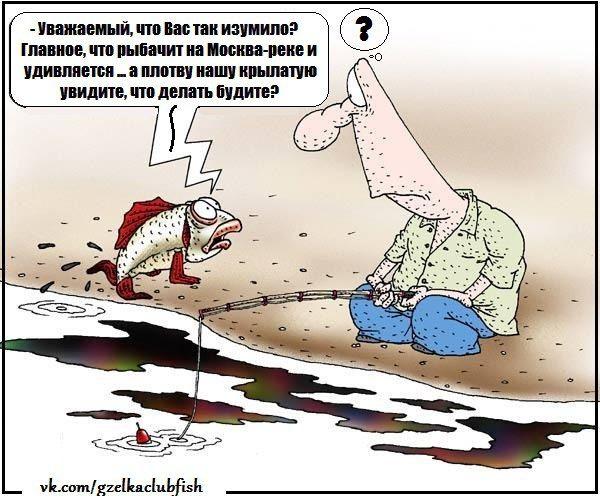 """Рыбхоз """"Гжелка"""" / Раменский Рыбхоз"""