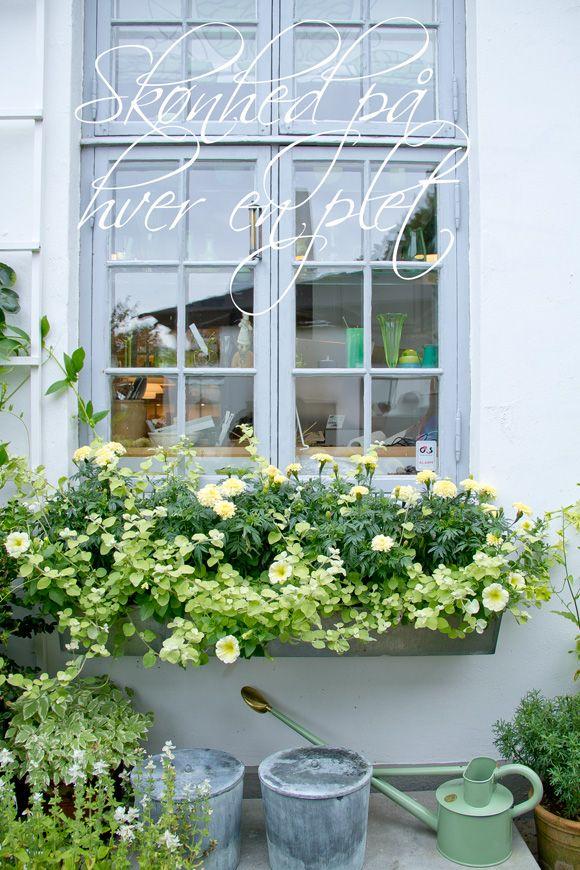 I haven hos Evigglade ♥: På søndagsvisit i Havekongens paradis