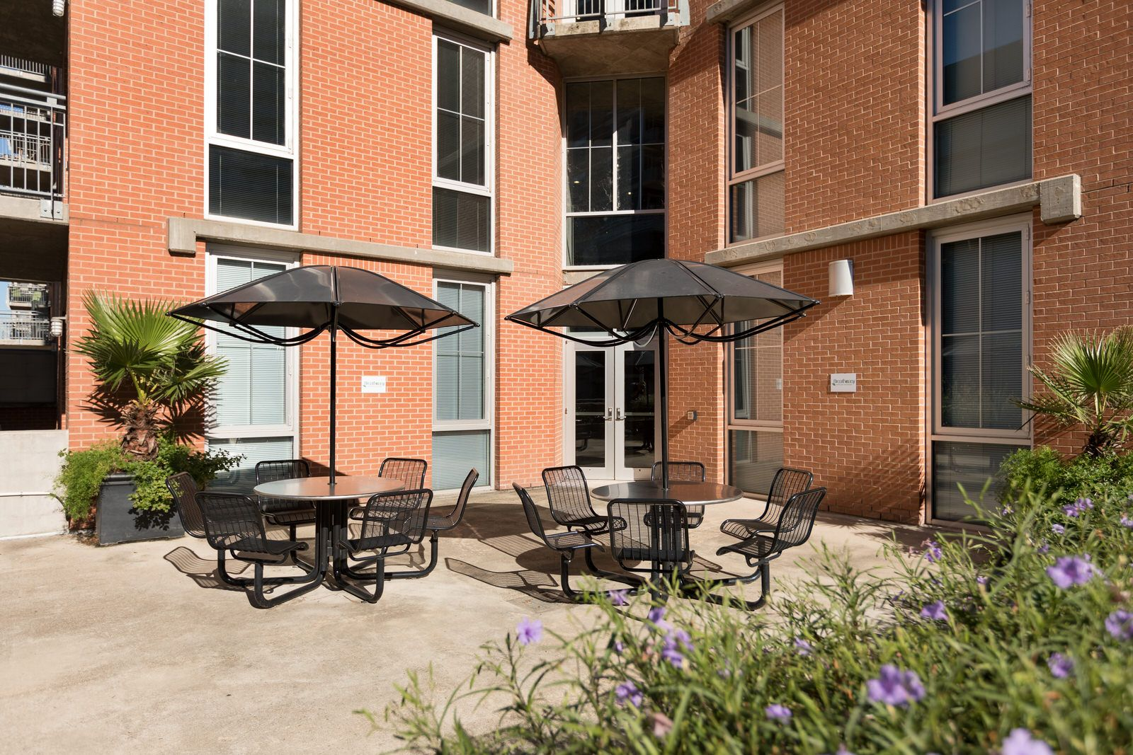The courtyard is the perfect place to get stake out a spot