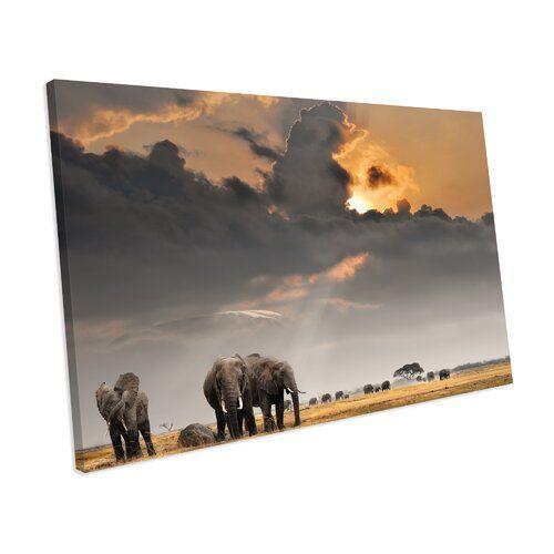 Elefanten Tiere Landschaft Box Gerahmte Leinwand Drucke World Menagerie Größe: 32 cm H x 42 cm B x H x 42 cm B