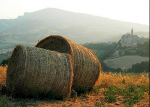 Cool yourself this summer going to Le Marche