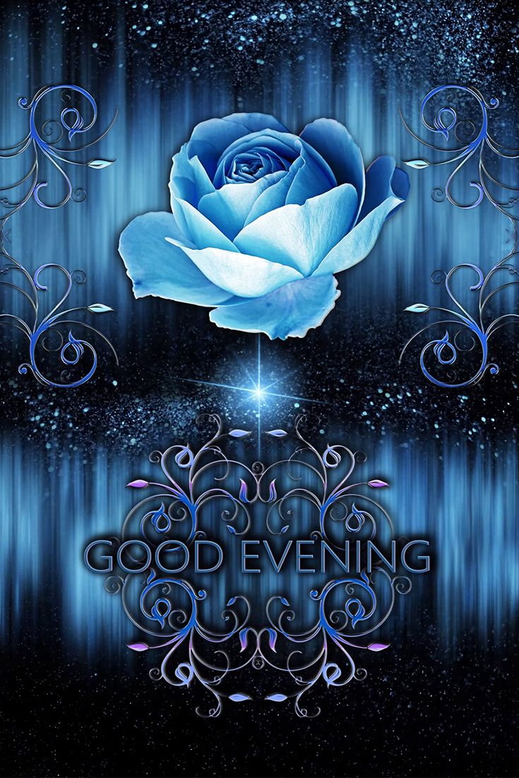 🧿Good evening!Blue Roses🧿Best Animated Greeting Card 4K 4K ...