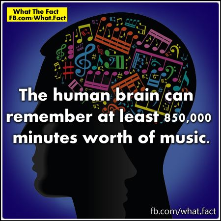 The human brain can remember at least 850,000 minutes worth of music.