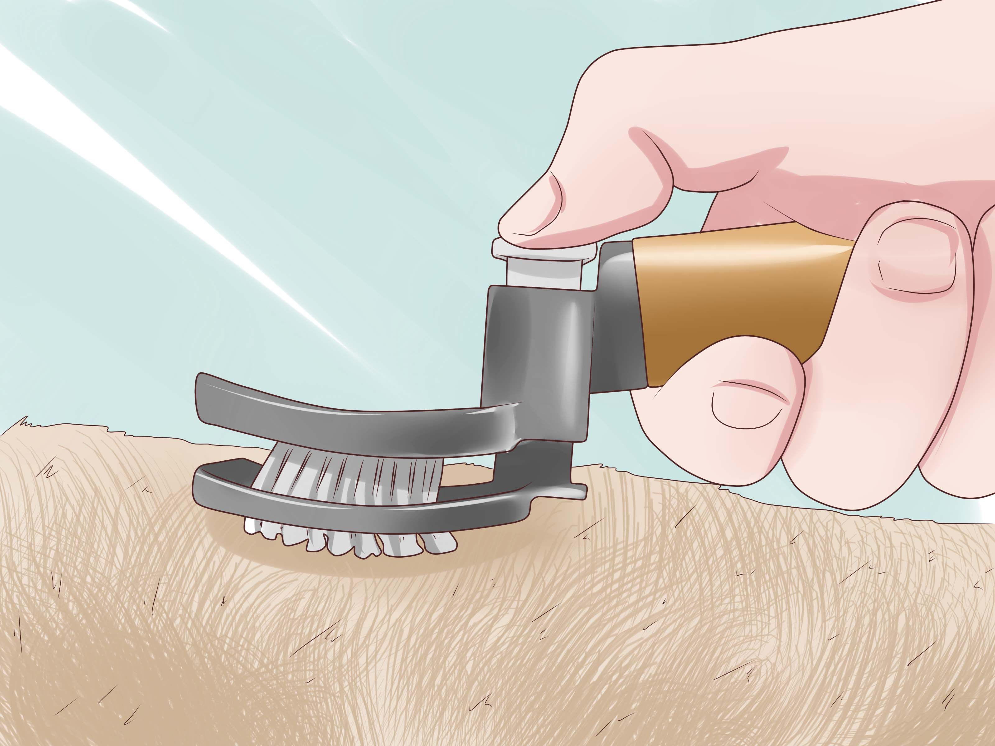 how to seduce a woman wikihow