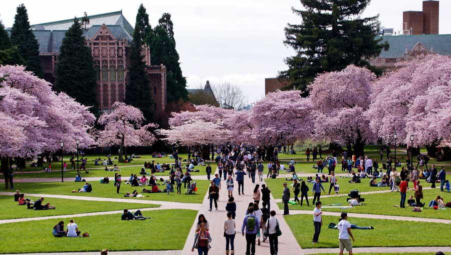 An Expert List Of The World's Best Universities in 2020