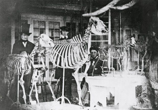 Edgar Allan Poe (right), who spent time at the Academy (N.S.P) doing research on mollusks; Joseph Leidy, a young medical student (center); and Samuel George Morton (left in top hat) were photographed in the Academy's new building at Board and Sansom Streets during the winter of 1842-43. This daguerrotype, possibly by Paul Beck Goddard, is the oldest-known photograph of an American museum interior.