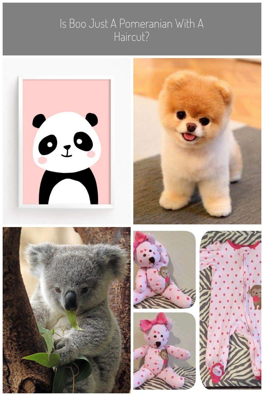 Baby Panda Bear Poster Cute Printable art animal poster #baby animals bear #babypandabears