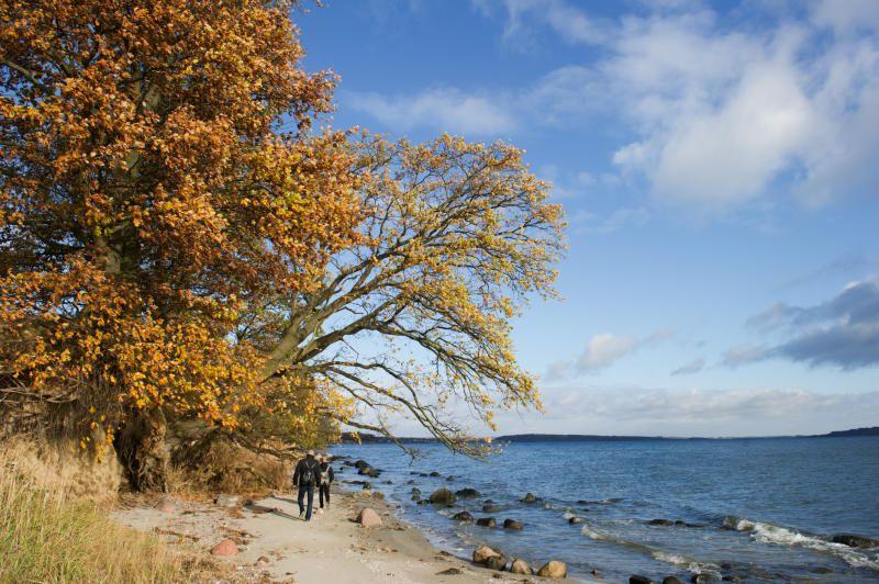 Herbst Urlaub im Nordosten (mit Bildern) Urlaub, Insel