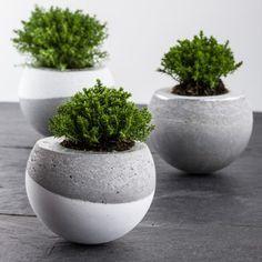Beton Gießen Deko diy vasen aus beton 2 stück pinteres