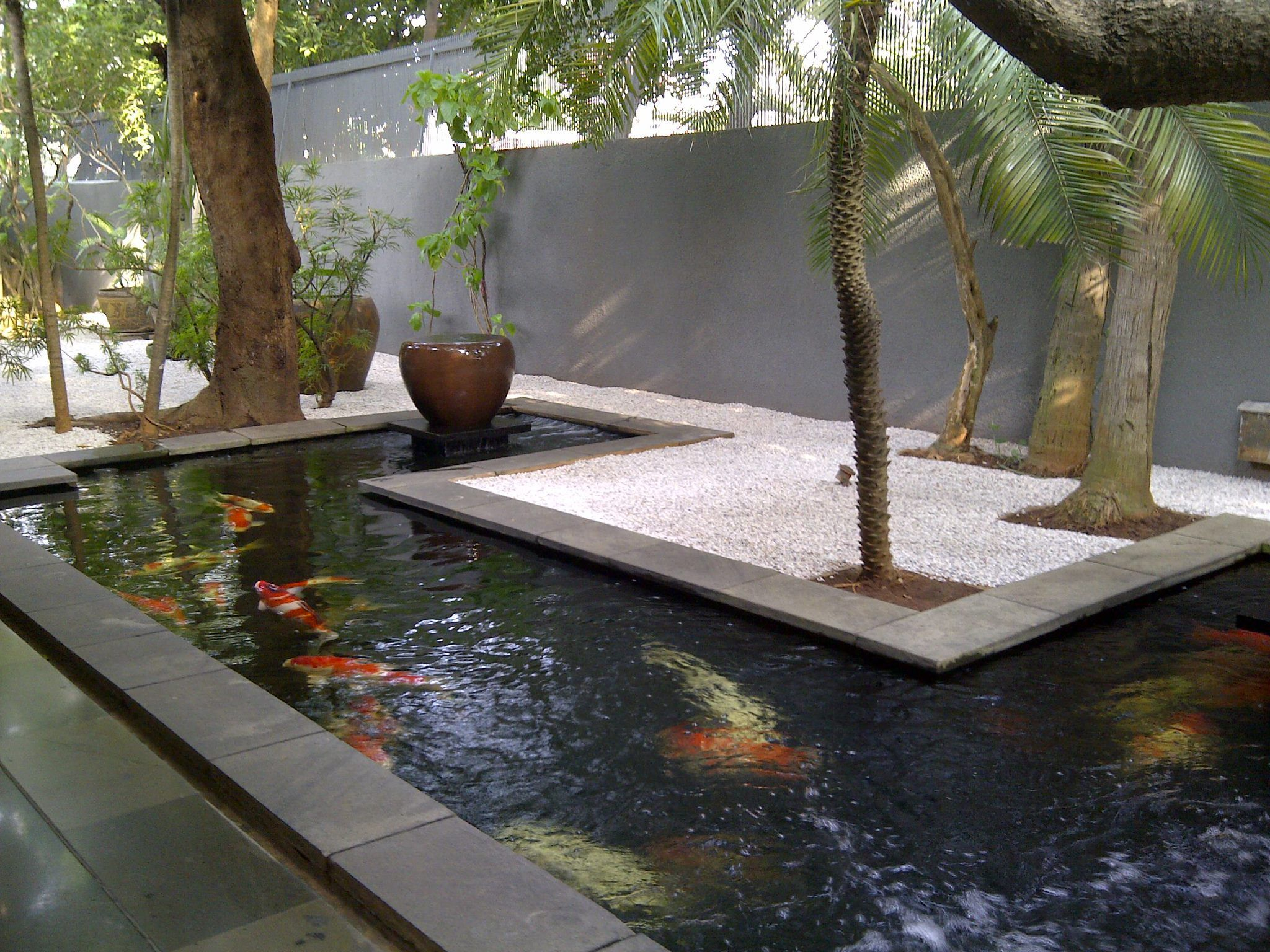 A sleek modern koi pond kolam and pool ponds backyard for Small pond house plans