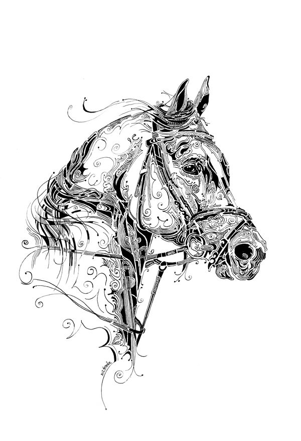 indian ink art on behance horse  u0026 bridle