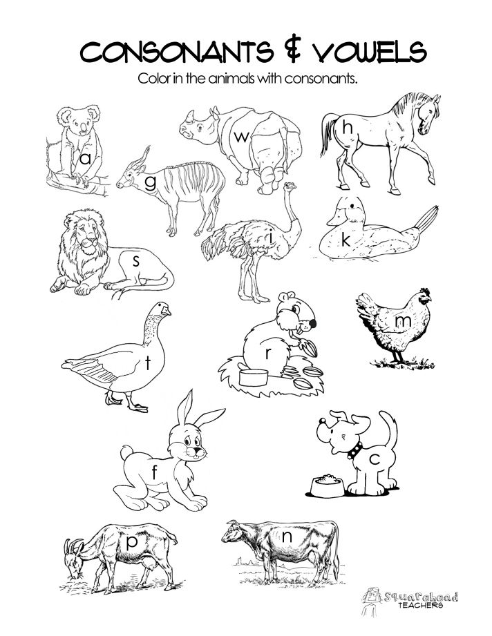 Consonants Vowels Free Worksheet Kindergarten Worksheets Vowel Worksheets Kindergarten Worksheets Sight Words