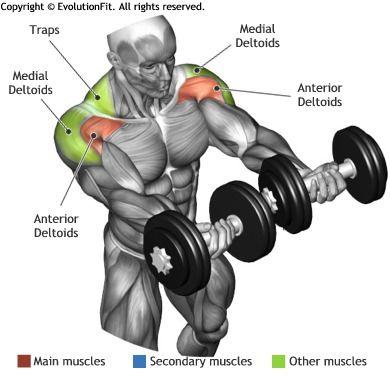 levantamiento de pesas para hombros
