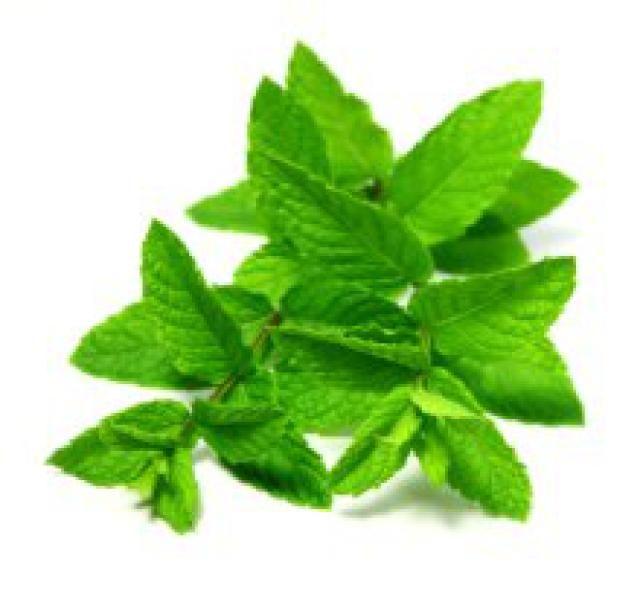 Spearmint tea for facial hair agree, very