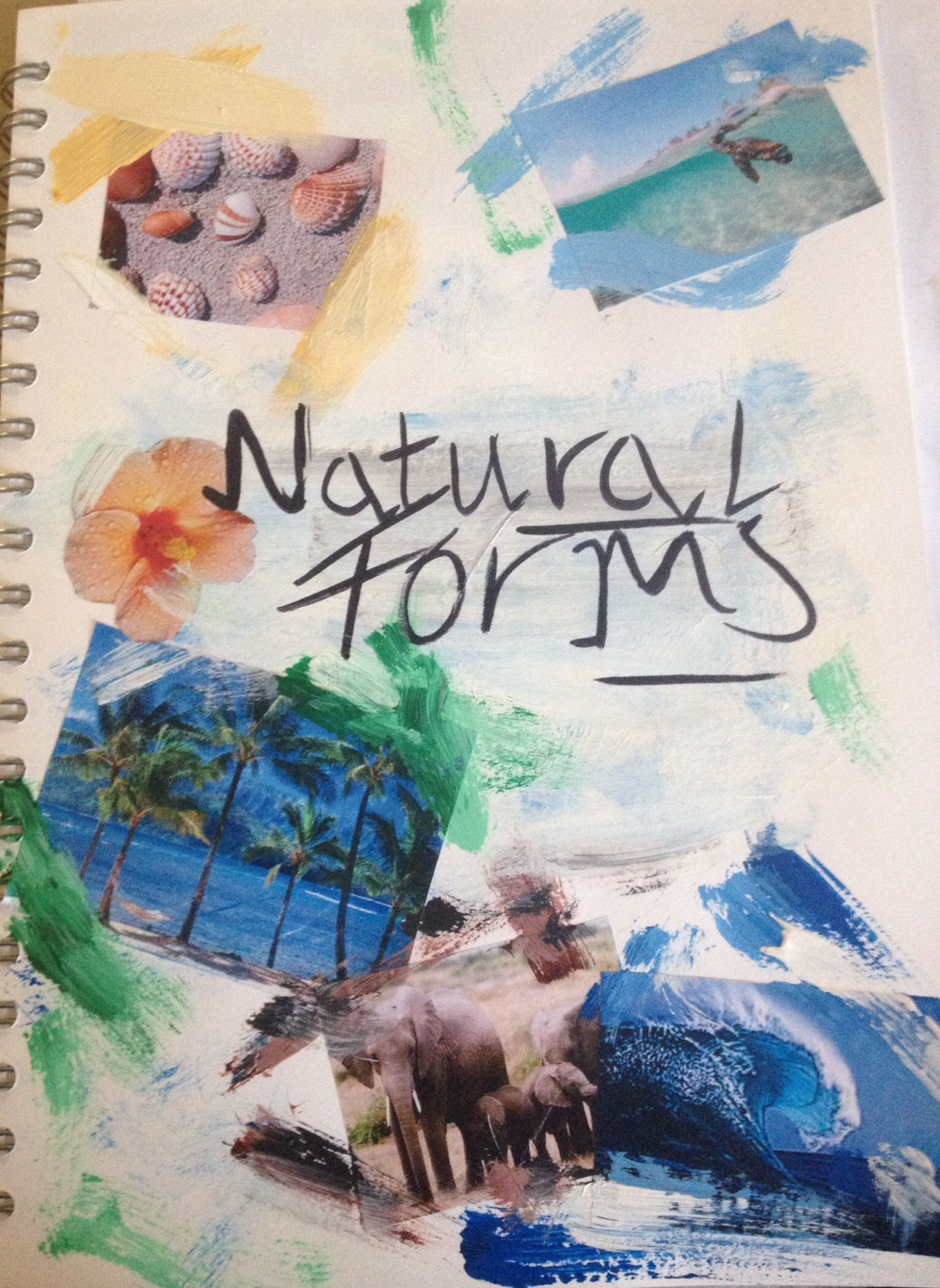 My Natural Forms Title Page Sketchbooks Natural Form Art