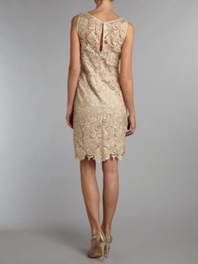 Adrianna Papell Evening Lace shift dress Champagne - House of Fraser