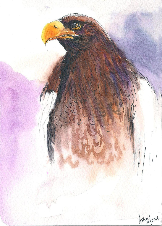 Eagle Predator Watercolors Original Hunting Bird Art Wall Art Wall
