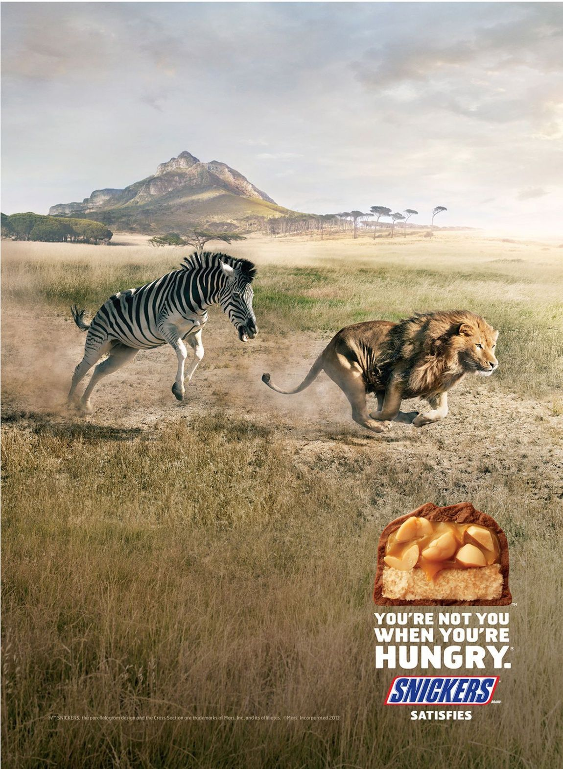 KampagnenWebsite Snickers  Zebra  repinned by  Visit our inspirational website Printwerbung