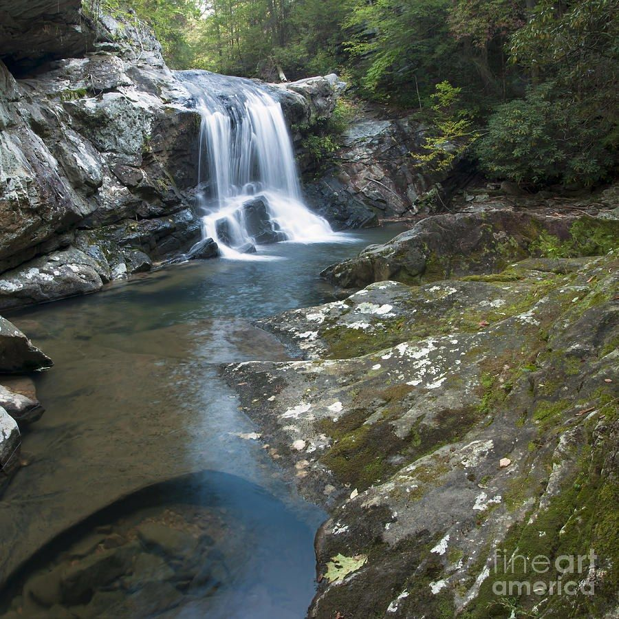 The Top 10 Places To Hike In Chattanooga