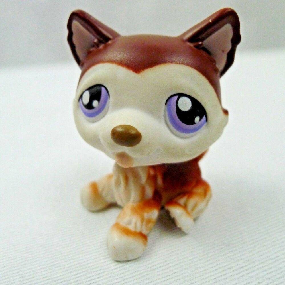 Details about Littlest Pet Shop Husky Puppy Dog 427 Brown